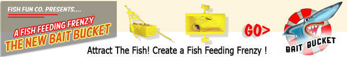 Create a Fish Feeding Frenzy, Then Catch the Fish!